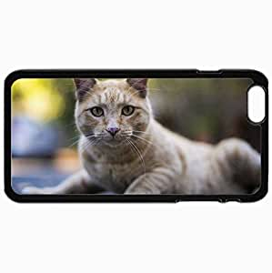Customized Cellphone Case Back Cover For iPhone 6 Plus, Protective Hardshell Case Personalized Cat View Background Black