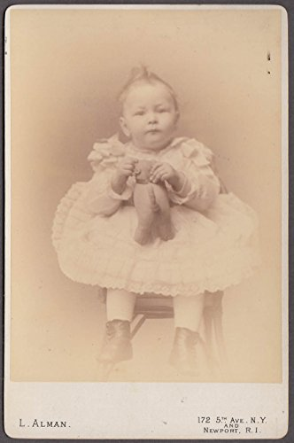 Likely George Moffat Bramwell & stuffed dog cabinet L Alman NYC & Newport (1880s Cabinet)