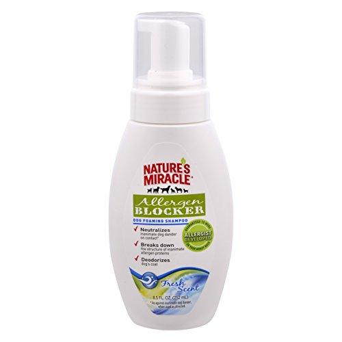 Best Dog Dander Remover Sprays
