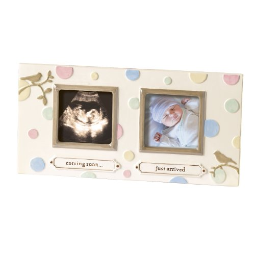 Grasslands Road Dot Dot Dot Sonogram Stoneware Frame, 8-1/8 by 12-1/4-Inch
