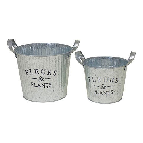 Rustic Ribbed Metal Tin Planters with Handles and Fleurs and Plants Lettering, Set of 2