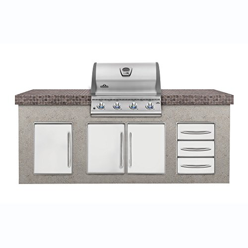 Napoleon LEX 485 Built-In Grill (BILEX485NSS-1), Natural Gas (Grill For Outdoor Gas Kitchen)