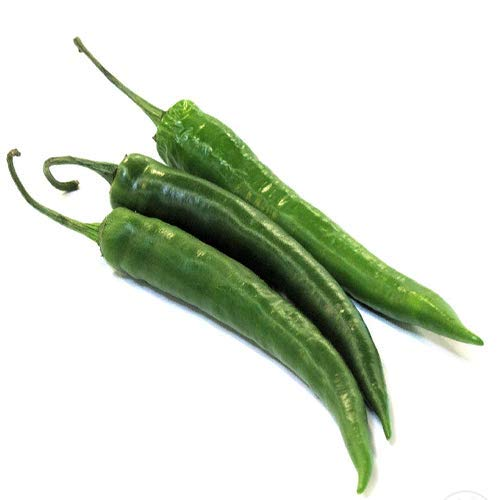 Buy green chilli seeds for planting