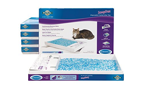 PetSafe ScoopFree Cat Litter Box Tray Refills with Premium Blue Non Clumping Crystals, 6-Pack