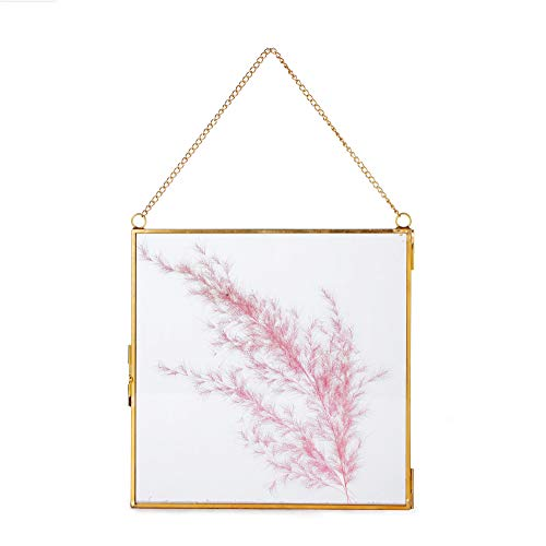 NCYP Large Wall Hanging Brass Glass Artwork Certificate Photo Picture Display Frame Geometric Ornament Plant Specimen Clip Modern Vertical Decor Card Holder Small