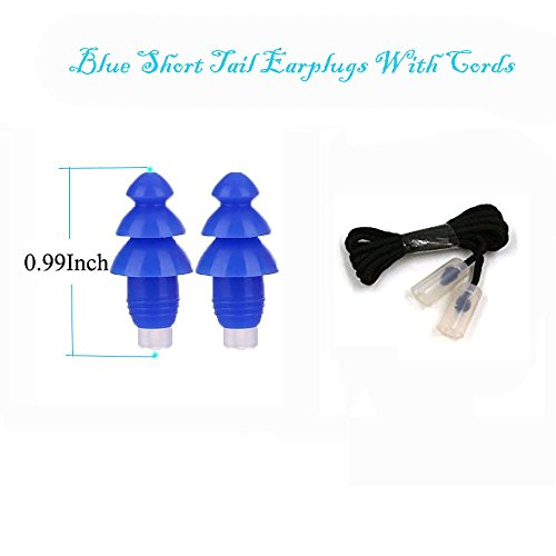 2 Pairs High Fidelity Ear plugs, Reusable Noise Canceling Earplugs for Daily Life Water Prevent for Swimming, With 2 Pairs Cords and a Carrying Case(Blue)