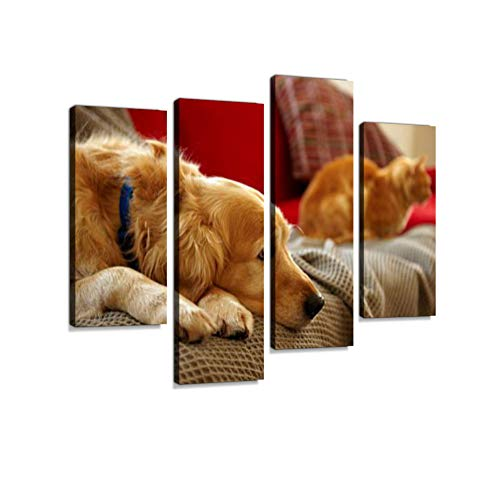 Golden Retriever Dog Ginger Tabby cat Resting Sofa Canvas Wall Art Hanging Paintings Modern Artwork Abstract Picture Prints Home Decoration Gift Unique Designed Framed 4 Panel