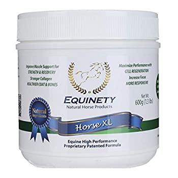 Image of Health and Household Equinety Horse XL 600gm