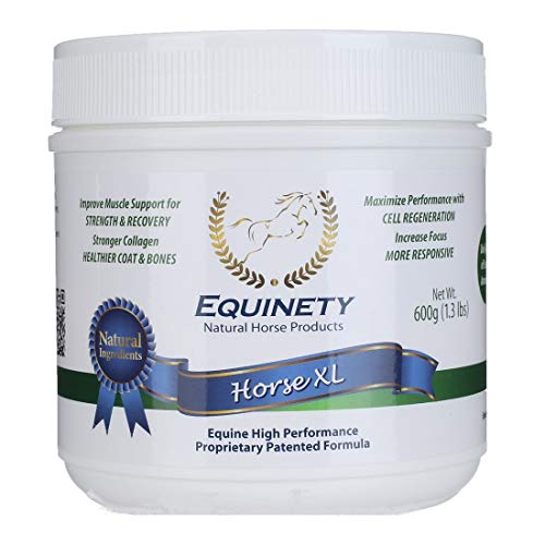 Equinety Horse XL 600gm (Best Supplement For Foundered Horse)