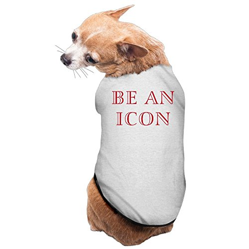 YEARla Be An Icon Dog Clothes Tshirt Dress Gray