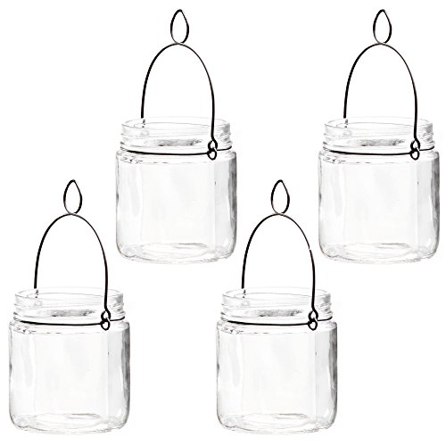 Glass Garden Candle - Hosley 4