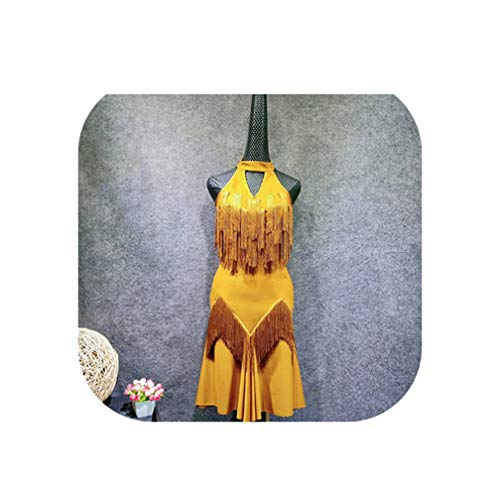 Adult Latin Dance Practice Sling Tassel Dress Rumba Samba Tango Cha Cha Dance Competition Performance Stage Wear Apparel,Dress as Photo,M]()