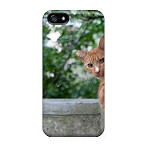 Iphone 5/5s Hard Back With Bumper Cases Covers Cat Looking Out The Mouse