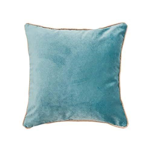 Amazon Com Duck Egg Velvet Pillow Cover Velvet Pillow