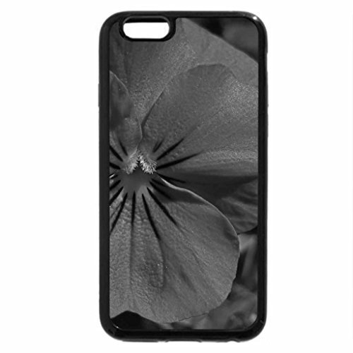 iPhone 6S Plus Case, iPhone 6 Plus Case (Black & White) - Pansy In The Sun