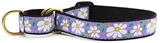product image for Up Country Daisy Martingale Dog Collar - Medium (12.5-20 Inches) - 1 in Width