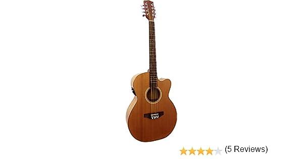 Ashbury MATC-CK-E - Mandolina (batería nimh, tipo octava): Amazon ...