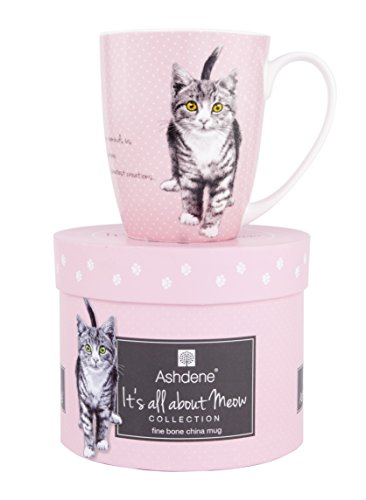 Ashdene It's All About Meow Cat Coffee or Tea Coupe Mug 12 oz Bone China (Pink) (China Coupe Bone)