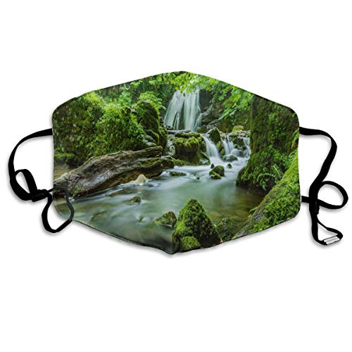 Anti Dust Mask Rainforest Cotton Mouth Mask Winter Healthy Washable For Unisex -