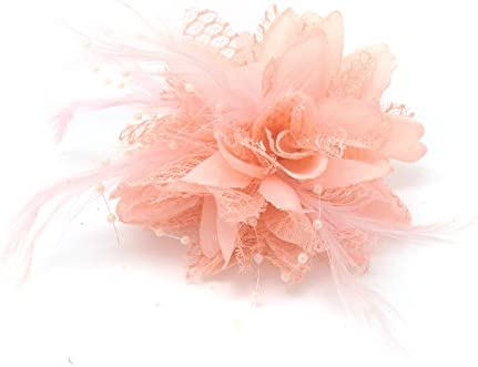 c73949d49c841 Flower Feather Bead Corsage Hair Clips Fascinator Hairband and Pin (Nude  Peach)  Amazon.co.uk  Beauty