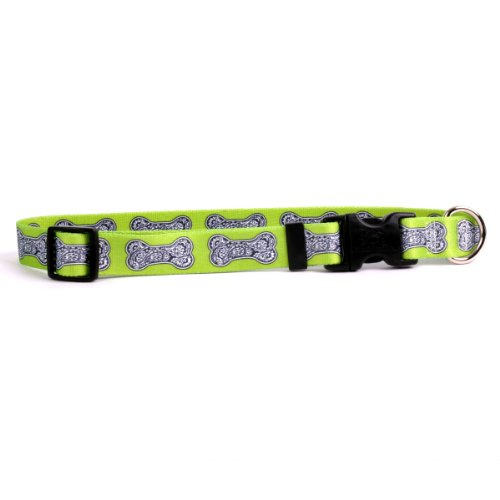 "Yellow Dog Design Bella Bone Green Dog Collar 3/4"" Wide and Fits Neck 10 to 14"", Small"