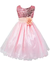Little Girls' Sequin Mesh Tull Dress Sleeveless Flower Party Ball Gown