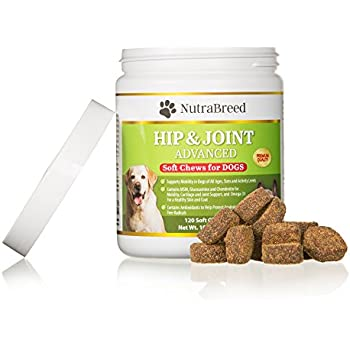 Amazon Com Nutrabreed Dog Joint Supplements Premium