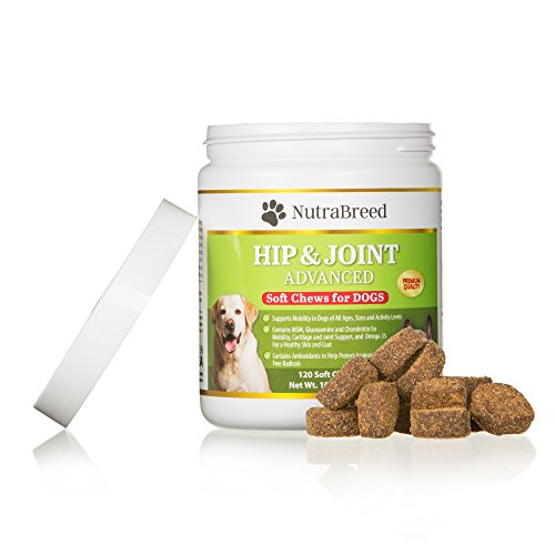 NutraBreed Dog Joint Supplements - Premium Glucosamine Plus Chondroitin - MSM, Yucca, Dog Vitamins, Fish Oils - Soft Chews for Joint Care & Dog Arthritis Pain Relief - GMP Certified - Made in USA
