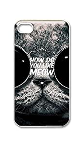 BlackKey how do you like meow Snap-on Hard Back Case Cover Shell for iPhone 5s -2513
