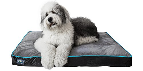 First-Quality 5' Thick Orthopedic Dog Bed | Pure Premium Memory Foam | (XL, Grey with Ocean Blue Trim)