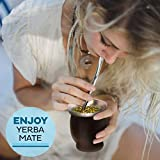Yerba Mate Bombilla Straw Set of 2 with Cleaning