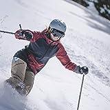 Wildhorn Roca Snowboard & Ski Goggles - US Ski Team