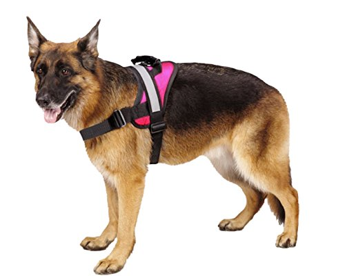 EXPAWLORER Big Dog Harness Soft Reflective No Pull Pink Size M 20-26inch