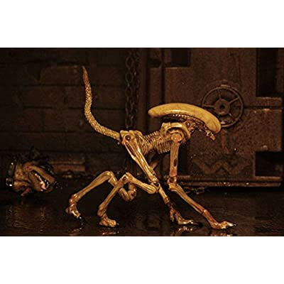 NECA Alien 3: Accessory Pack – Creature Pack: Toys & Games