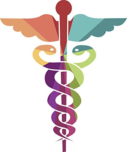 EW Designs Pretty Rainbow Children's Medical Caduceus Symbol Icon Vinyl Decal Bumper Sticker (4