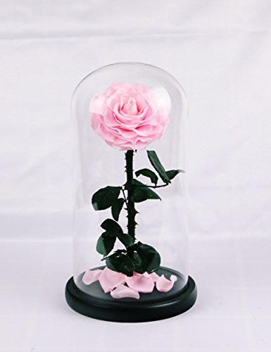 Handmade Preserved Rose Never Withered Roses Flower in Glass Dome, Gift for Valentine's Day Anniversary Birthday (Pink) (Handmade Glass Flower)