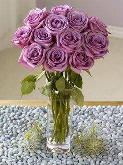 One Dozen Lavender Roses One Dozen Organic Bouquet