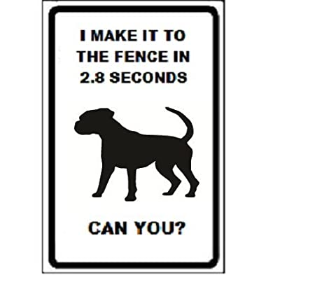 Boxer Dog I Make It To The Fence In 2 8 Seconds Can You 18 X 12