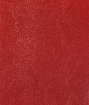 Nassimi Seaquest Lighthouse Red Vinyl Fabric - by the Yard