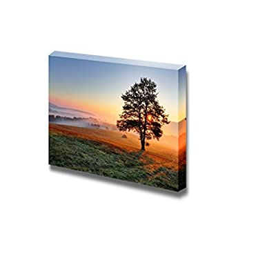 Canvas Prints Wall Art - Beautiful View/Scenery of a Tree on Meadow at Sunset | Modern Wall Decor/Home Decoration Stretched Gallery Canvas Wrap Giclee Print & Ready to Hang - 24