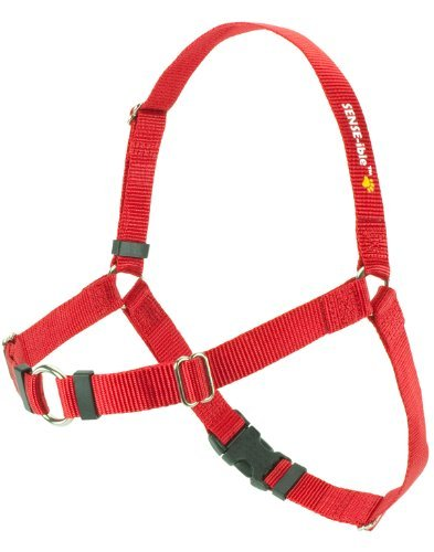 sensation no pull harness - 6