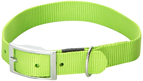 (Dogit Nylon Single Ply Dog Collar with Buckle, X-Large, 20-Inch, Green)