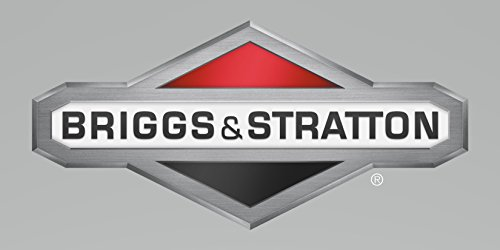 Briggs & Stratton Parts # 202894GS, KIT-MANUAL ACC by Briggs & Stratton (Image #1)