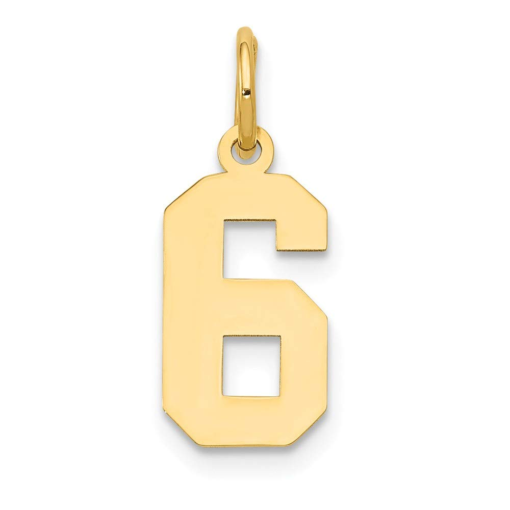 7mm x 18mm Solid 14k Yellow Gold Small Polished Number 6 Pendant Charm