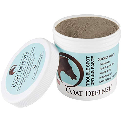 Coat Defense Drying Paste for Horses, 24 oz by Coat Defense (Image #1)