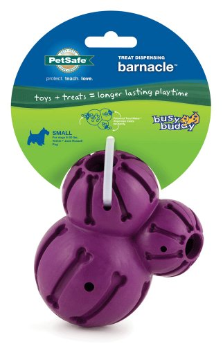 PetSafe Busy Buddy Barnacle Dog Toy, Small - Treat Dispensing Chew Toy