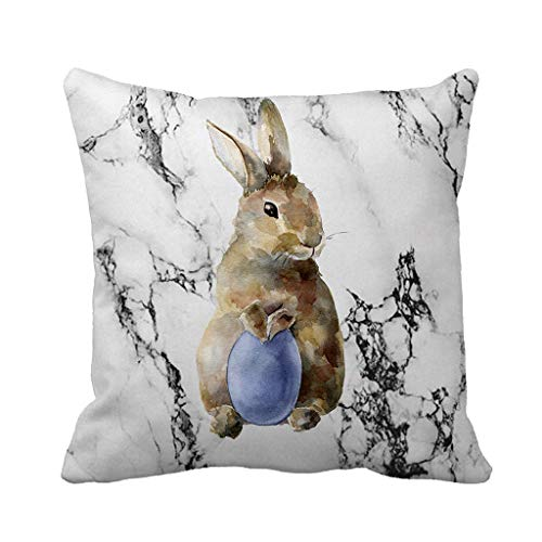 Sikye Happy Easter Removable Cover Cartoon Bunny Marble Pillow Case Festival Holiday Decor for Living Room Sofa Bed,Square (A2) ()