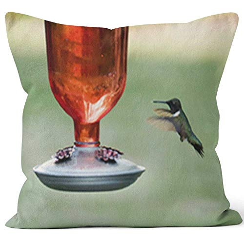 (Hummingbird in Flight at Feeder During Springtime 2 Throw Pillow Cushion Cover,HD Printing Decorative Square Accent Pillow Case)