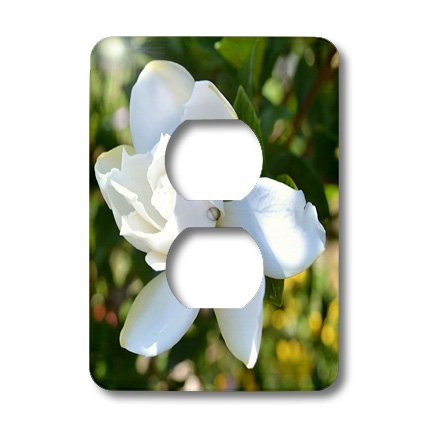 lsp_25626_6 Patricia Sanders Flowers - Natures Expression of a Gardenia - Light Switch Covers - 2 plug outlet cover ()