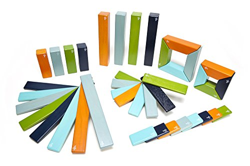 40 Piece Tegu Explorer Magnetic Wooden Block Set, Nelson